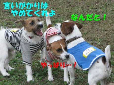 繝ゥ繝ウ19_convert_20091025003854[1]