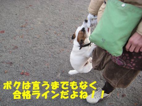 縺ョ縺ウ縺溷菅8_convert_20091107185742[1]