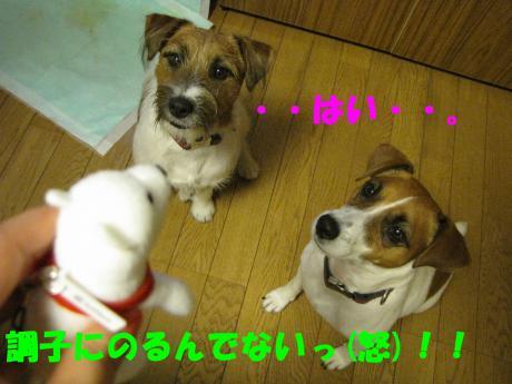 縺顔宛縺輔s6_convert_20091110222449[1]
