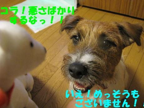 縺顔宛縺輔s4_convert_20091110222356[1]