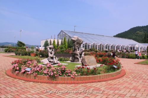 島田ばらの丘公園2011
