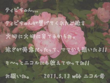 110513_1