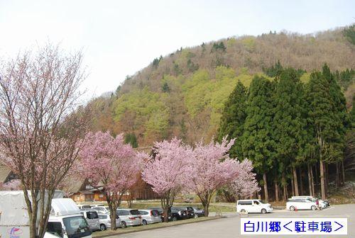 20110503takayama11.jpg