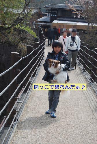 20110503takayama23.jpg