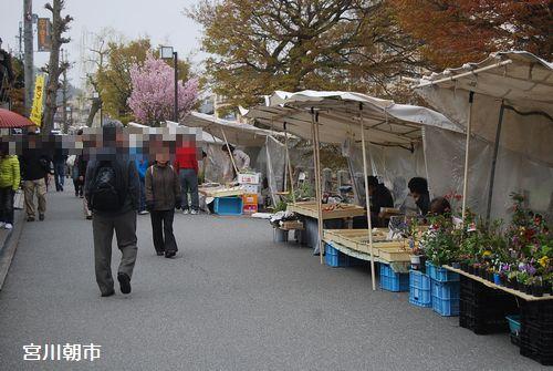 20110503takayama6.jpg