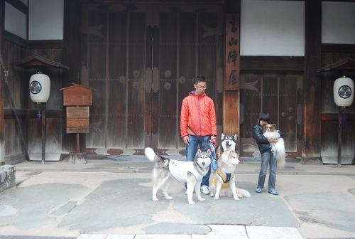 20110503takayama8.jpg