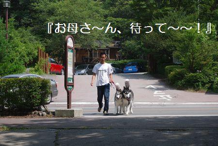 20110815(10).jpg
