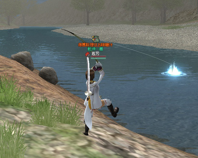 コイ釣るのにだって全力投球!