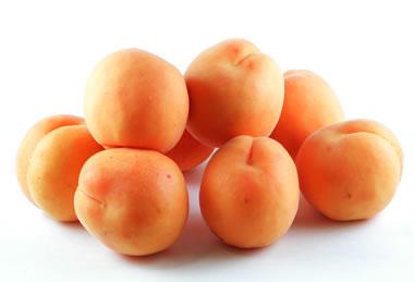 apricot01.jpg