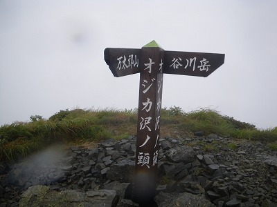 オジカ沢ノ頭