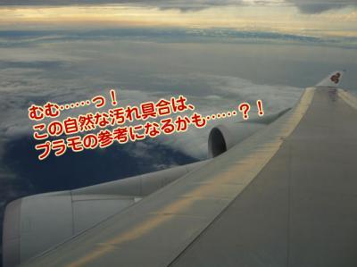 タイ旅行 翼の汚れ具合