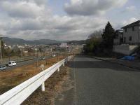 散歩20110129-1