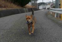 散歩20110224-1