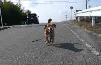 散歩20110225-2