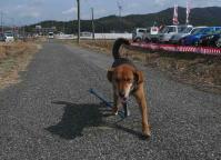 散歩20110225-4