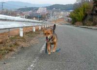 散歩20110227-1