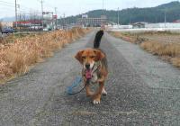 散歩20110227-2