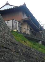 散歩20110426-4