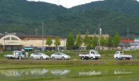 散歩20110531-5