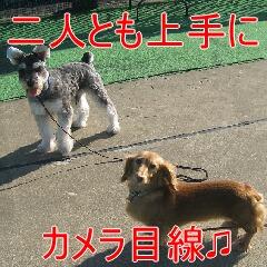 IMG_0201.jpg
