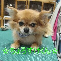 IMG_9359.jpg