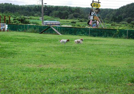 2009-8-14~15 鳥取旅行 039