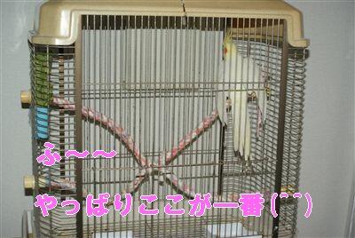 DSC01502_R.jpg