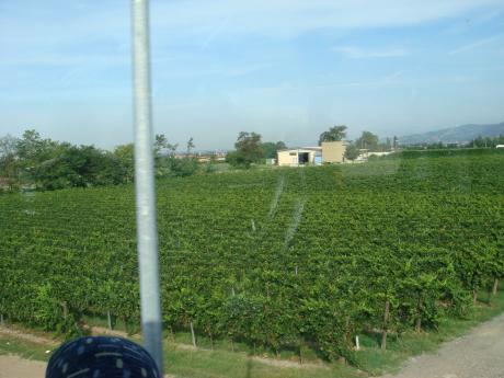 ITALIA旅行+068_convert_20110915200744