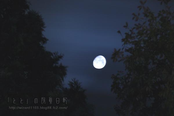 月齢12.268_02