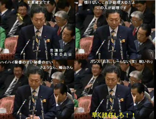 20091103jihakuhato2.jpg