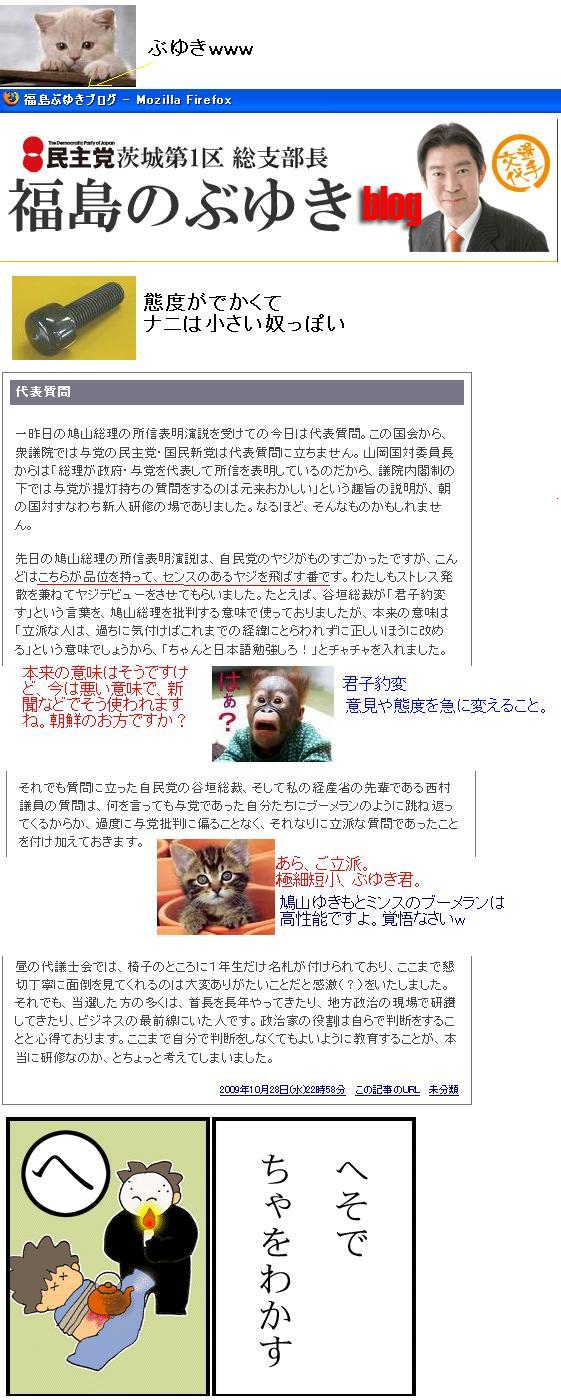 buyukifukushimabiog.jpg