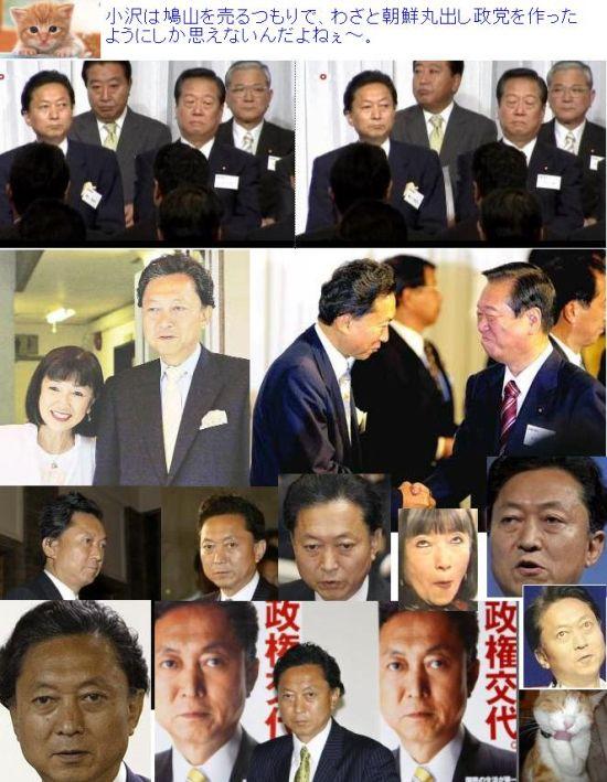 damepoyukiohatoyama200911001.jpg