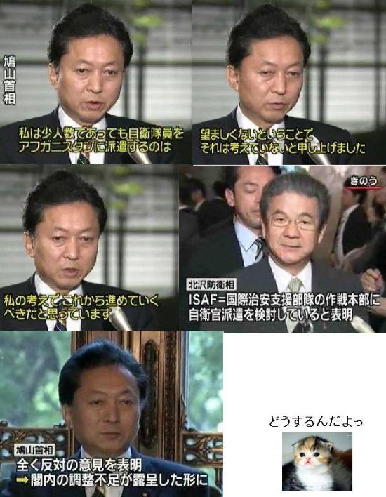 hatojieitaikitazawabuyiyang1.jpg