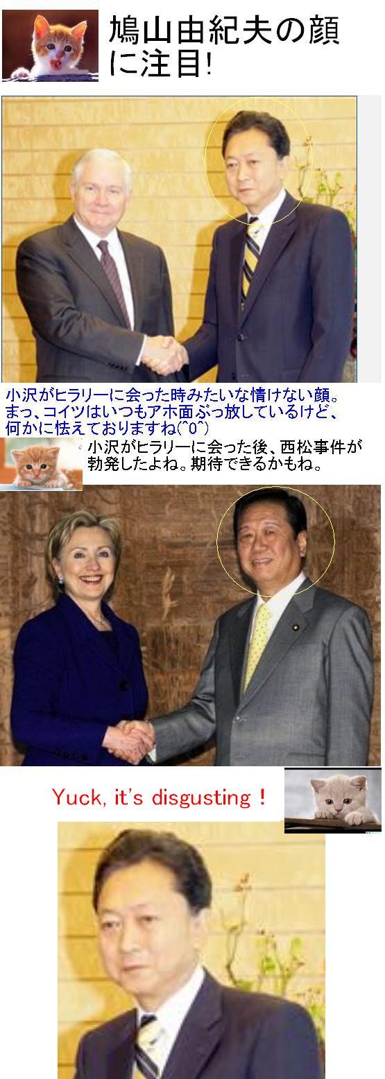 hatoozawavsusa1.jpg
