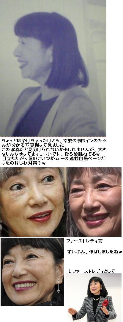 miyukihatoyamashiwashimi1.jpg