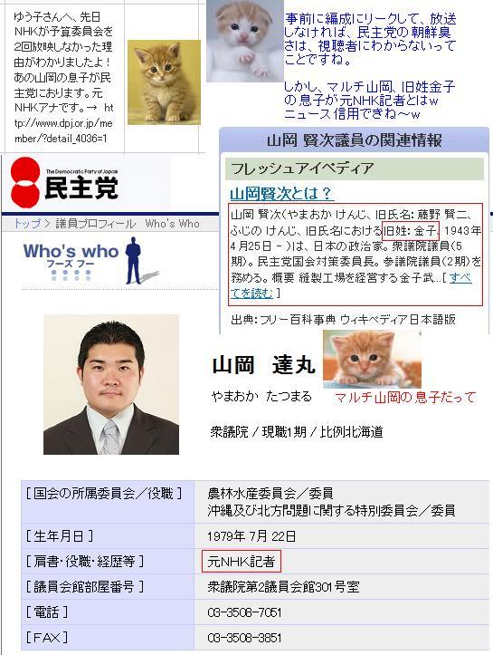 yamaokakanekomushko1.jpg