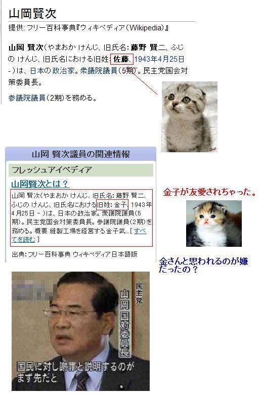 yamaokakenjikanekowww1.jpg