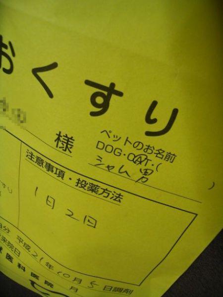 1_20091006090645.jpg