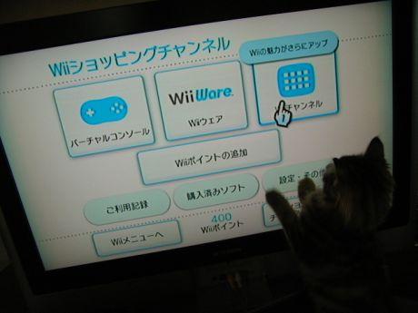 6_20100105102932.jpg