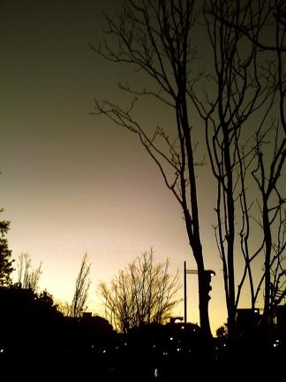 PICT0127.jpg