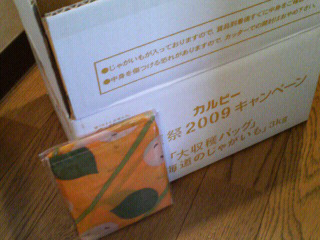 201001091510000_2.jpg