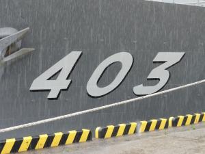 DSC00227.jpg