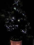 今年最初のクリスマスツリー