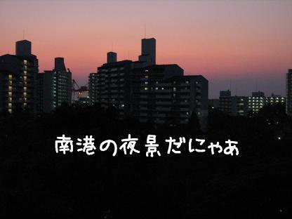 photokako125542437296267.jpg