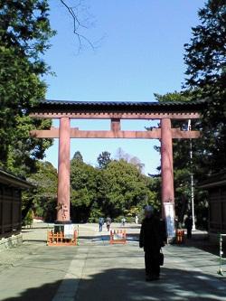 omiya-torii.jpg