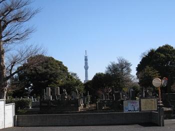skytree-yanaka1.jpg