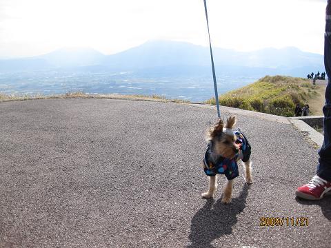 熊本旅行①・・4