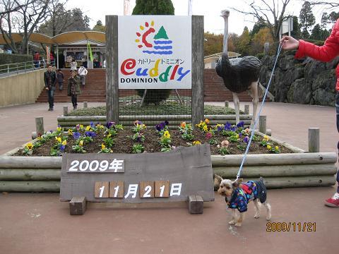 熊本旅行②