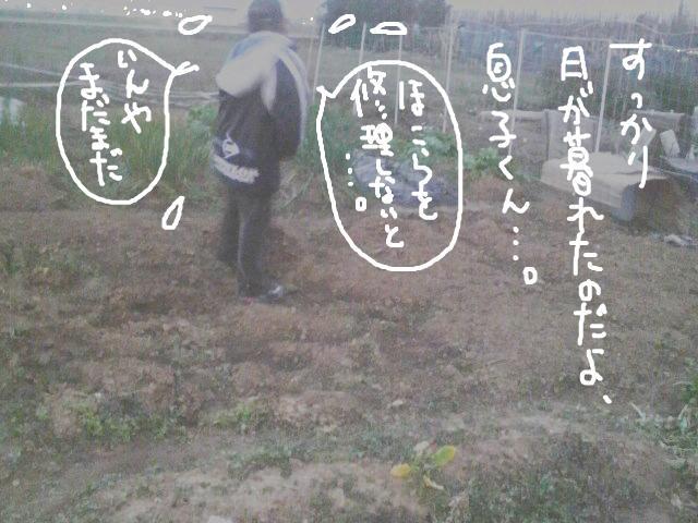 snap_yamamotokosaku_2009121225032.jpg