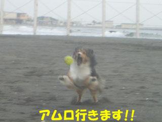 きえぇえええええ!!!!